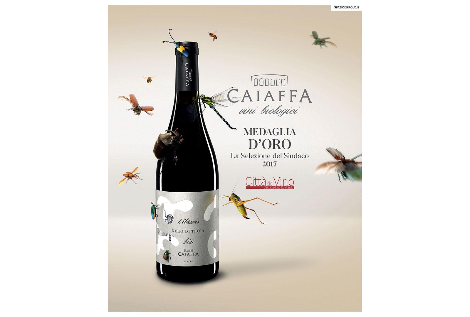 citta-del-vino-medaglia-oro-caiaffa-vini